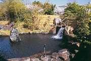 鈴鹿サーキットフラワーガーデンホテル 親子でゆっくり入れる天然温泉