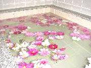 カントリーペンション 森のシンフォニー お風呂